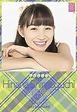 クリアファイル付 (卓上)AKB48 下口ひなな カレンダー 2015年