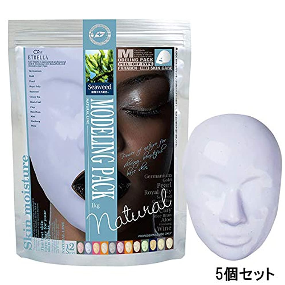 もっと少なく紫の防腐剤シエル エトゥベラ モデリングパック 海藻 (5個セット) [ フェイスパック フェイスマスク フェイシャルパック フェイシャルマスク 顔パック はがす 剥がす フェイス パック マスク 業務用 ]