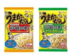 ハウス食品 うまかっちゃん 炒飯の素・とんこつ味+からし高菜風味 2個セット