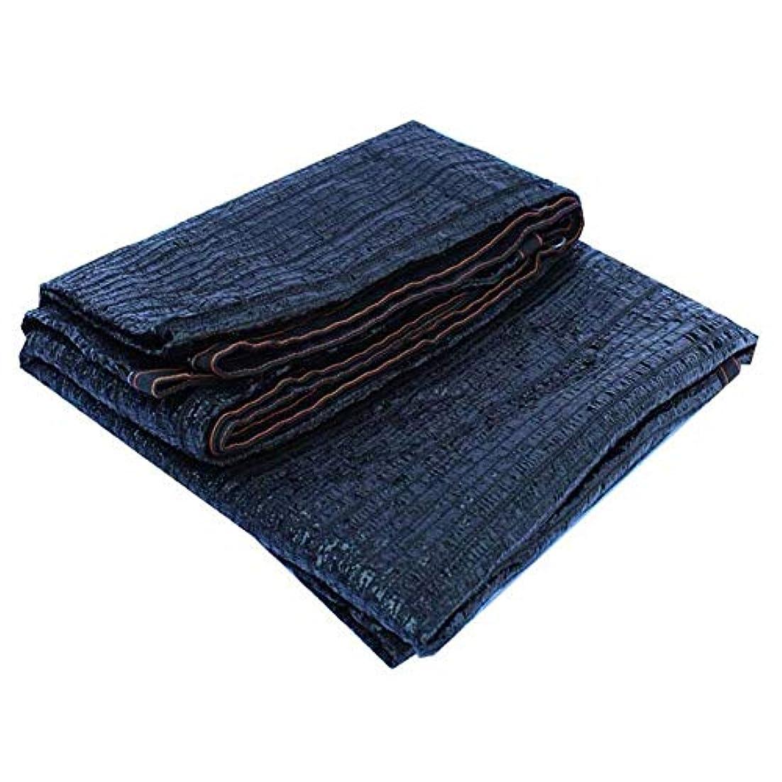 調和のとれた機会灰ZX タープ シェーディングネット グロメットとの完璧な日焼け止めシェード布 工場カバー温室効果納屋の95%UVブラック ケンネルプールパーゴラやプール テント アウトドア (Color : Black, Size : 4X10M)