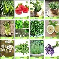 高い成長SEEDSだけでなくPLANTS:SEEDコンボパックチャイブ、わら、レモンバーム、ローズマリー、アスパラガス、クレス、レモンバジル、ドイツChamoeタイム英語冬、ラベンダーの種子のくし