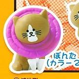 ニャアアアン!猫のぽんた マスコット2 [2.ぽんた(カラー2)](単品)