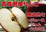 B級品 紅玉 ダンボール詰 10kg わけあり 青森県産 りんご