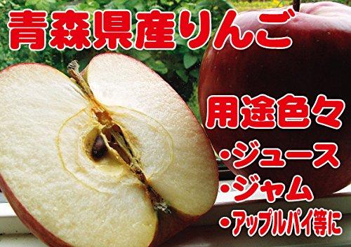 B級品 紅玉 20kg 用 木箱 サイズ ダンボール詰 わけあり 青森県産 りんご
