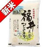 29年産 新米 福井産 コシヒカリ 5kg (白米精米(精米後約4.5kg))