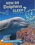 How Do Dolphins Sleep? (Crazy Animal Facts) 画像