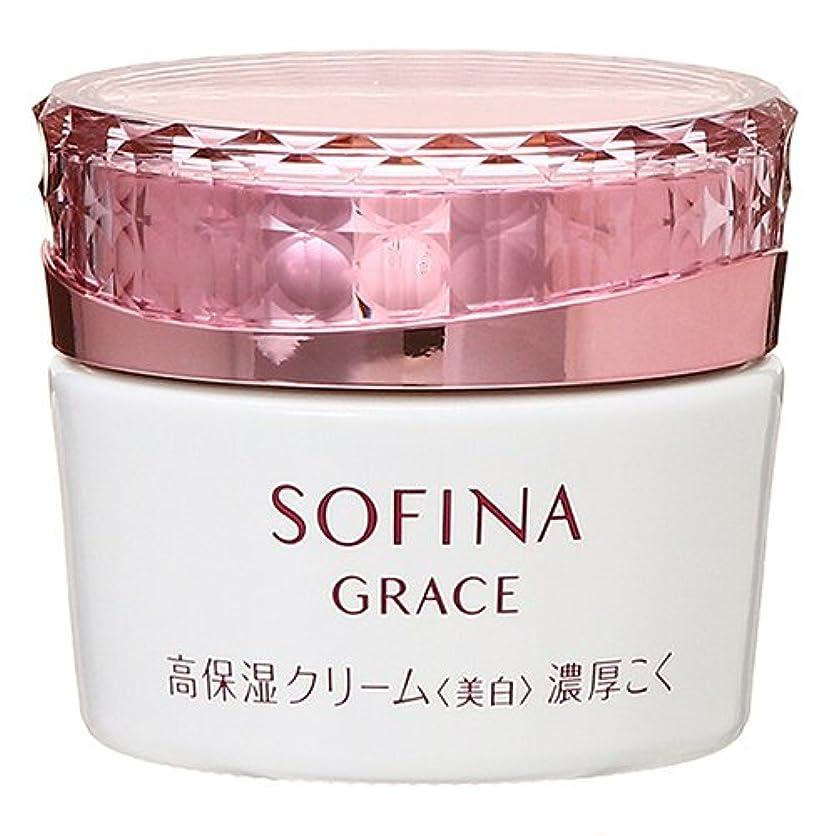 ピンク姿を消すビバ花王 グレイス ソフィーナ 高保湿クリーム 美白 濃厚こく 40g