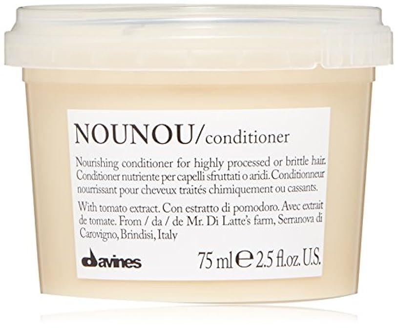 変換本能引数NouNou Nourishing Illuminating Cream Conditioner