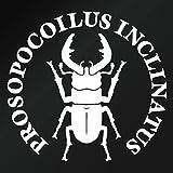 【ノコギリクワガタ Ver.032 カッティングステッカー ミニサイズ 3枚組 幅約11.5cm×高約10.8cm】カラー:白(ホワイト)