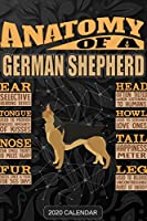 Anatomy Of A German Shepherd: German Shepherd 2020 Calendar - Customized Gift For German Shepherd Dog Owner