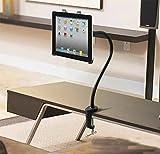 REAK タブレット用スタンド/ipadスタンド ホルダー マウント アーム付き 360度調整可能 グースネック 【1年間の安心保証】iPad mini/iPad air/iPad2/3/4等タブレット対応(ブラック)