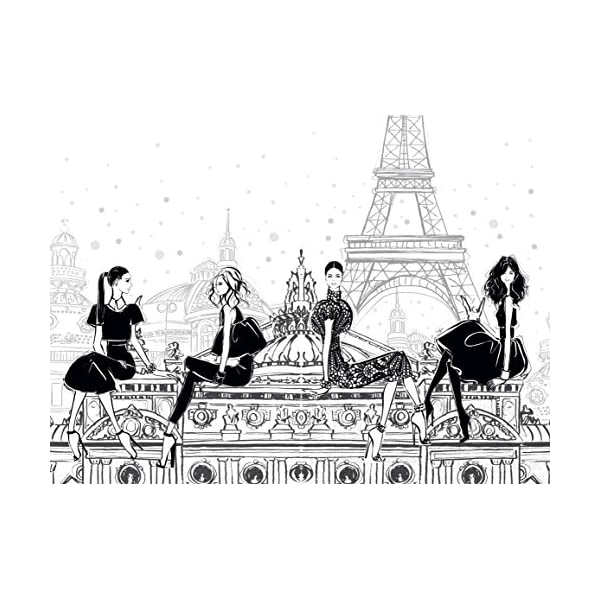 Paris: Through a Fashi...の紹介画像10