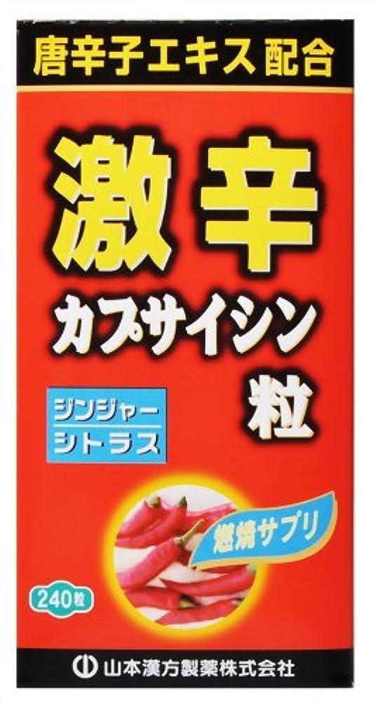 定常血色の良いバルーン激辛カプサイシン粒 240粒