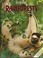 Tropical Rainforests (Close Up)