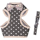 April Pets Comfortable Stylish Cotton Dog & Cat Harness Leash Set for Small Puppies and Cats (S, Grey-White Spots)