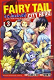 FAIRY TAIL CITY HERO(3) (講談社コミックス)