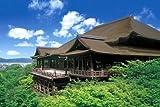 1000ピース ジグソーパズル めざせ!パズルの達人 新緑の清水寺-京都(50x75cm)