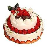クリスマスケーキ 2017 デコレーションケーキ パーティー用2段デコレーション チーズケーキ ギフト プレゼント