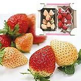 【 九州産 】淡雪 & あまおう 紅白セット 白イチゴと真っ赤なイチゴのセット (2パック (各1パックずつ))
