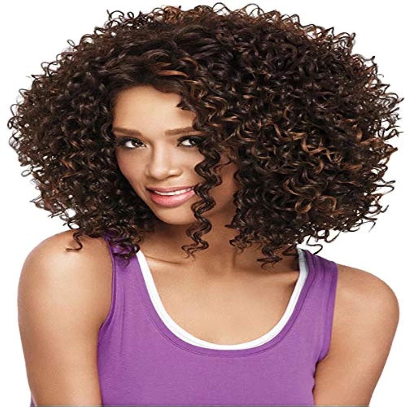 銀行バーベキューフレキシブルアフロカーリーウィッグ耐熱完全な頭部の髪の交換コスチュームパーティーコスプレ用ブラック通気性ウィッグ用ウィッグ合成繊維レースフロントウィッグ人毛ウィッグ (Color : Dark Brown)