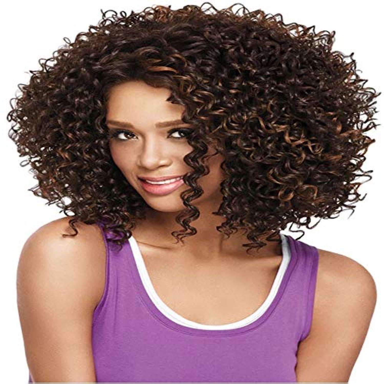 多年生太陽弱点アフロカーリーウィッグ耐熱完全な頭部の髪の交換コスチュームパーティーコスプレ用ブラック通気性ウィッグ用ウィッグ合成繊維レースフロントウィッグ人毛ウィッグ (Color : Dark Brown)