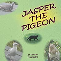 Jasper the Pigeon