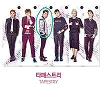 2PM テギョン タペストリー