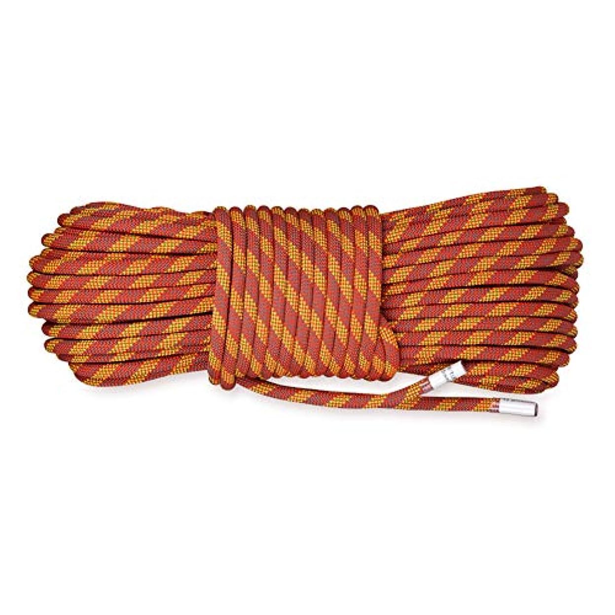 概念特別な実質的にロッククライミングロープ、10.5ミリメートル多目的安全ロープ屋外パワーロープ用ロックツリーウォールクライミングレスキューファイヤーエスケープダウンヒル,50m