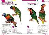 中型インコ完全飼育: 飼育、接し方、品種、健康管理のことがよくわかる (コガネメキシコ、オキナインコ、ウロコメキシコインコ 他) (PERFECT PET OWNER'S GUIDES) 画像