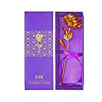 orchidbest 24Kゴールド箔ローズ、フルBlossom Flower with gift-box for Loved One、理想的なギフトforバレンタイン、母の日、誕生日、記念日、結婚、色褪せないローズfor Love Last Forever 11.2 x 4.3 x 3 inches Gold Foil Rose