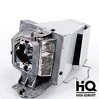 Rembam BL-FU195A/BL-FU195B/BL-FU195C/SP.71P01GC01 Replacement Lamp For OPTOMA DW441/HD27/HD142X 【Creative Arts】 [並行輸入品]