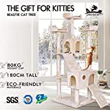 BEASTIE Cat Tree Scratching Post Scratcher Tower Condo House Furniture Wood 180 Beige Colour