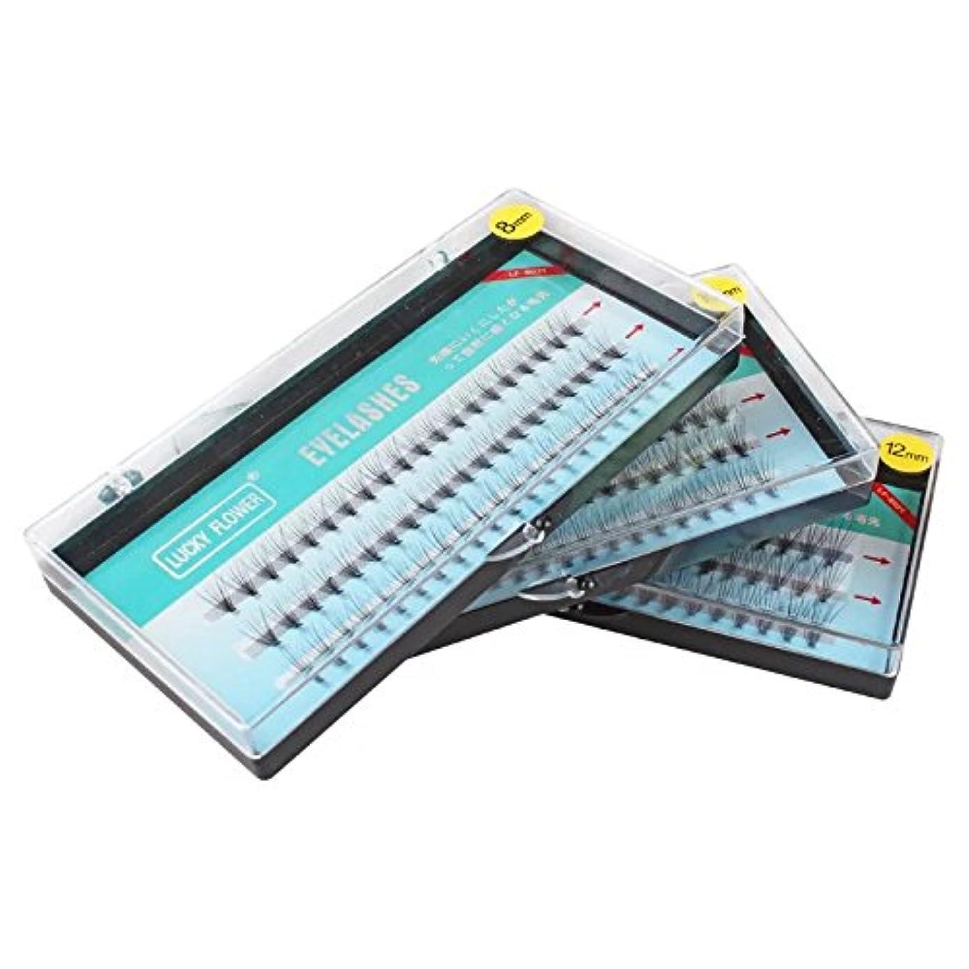 前部人生を作る予感高品質10本束 8mm Cカール まつげエクステ フレア セルフ 素材 マツエク (8mm)