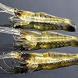 Niome 4 cm Soft Shrimp Fishing Lure with Fishy Smell Plastic Fishing Baits Set 10 Pieces