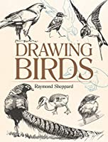 Drawing Birds (Dover Art Instruction)