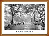 ポスター アンリ シルバーマン Poet's Walk、 New York City 額装品 ウッドベーシックフレーム(オレンジ)