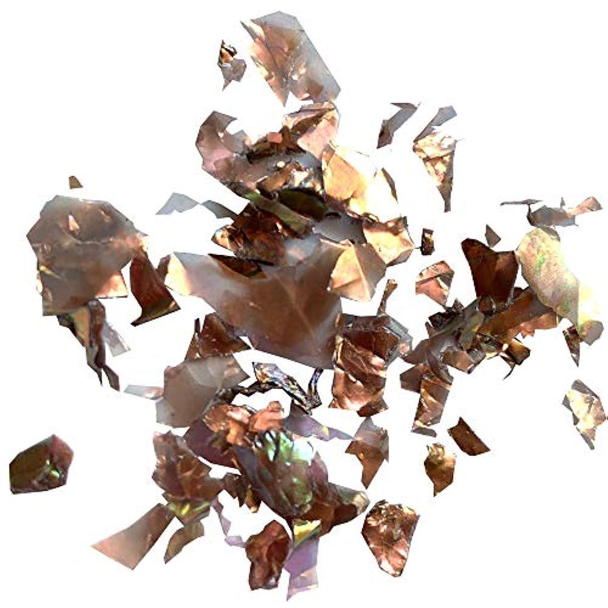 プレビスサイトオン火山Charlon(シャルロン) Charlon アンティークホロ 乱切り 0.4g