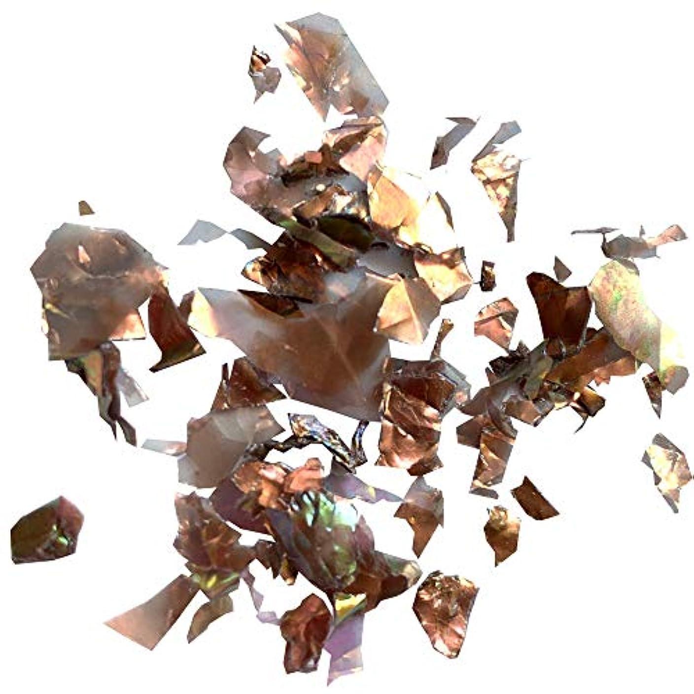 エーカー動機付けるロバCharlon(シャルロン) Charlon アンティークホロ 乱切り 0.4g