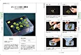 樹脂封入標本の作り方 生物を美しく記録する魔法の工作 画像