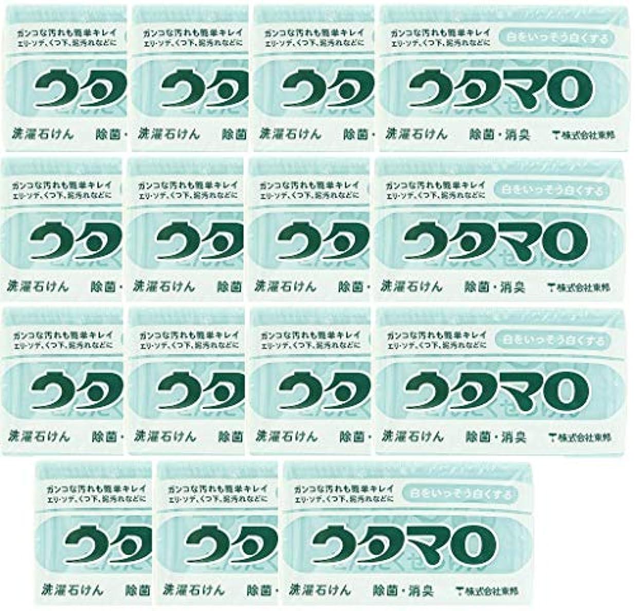 操作接地気怠い【まとめ買い】東邦 ウタマロ マホー石鹸×15個