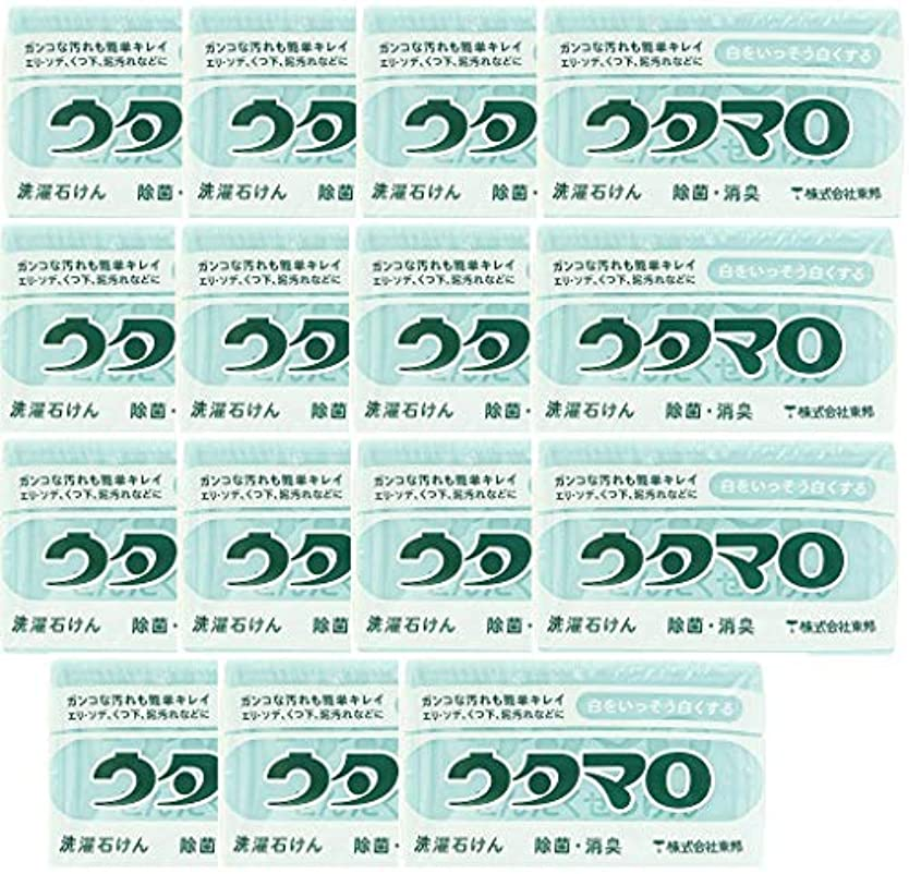 現実対角線ヤング【まとめ買い】東邦 ウタマロ マホー石鹸×15個