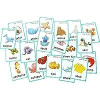 FieldDream 子供用フラッシュカード 学習玩具 英語の赤ちゃんカード 子供用ギフト リング付き オフホワイト NB