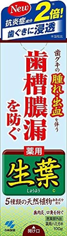 散文逆説作り生葉(しょうよう) 歯槽膿漏を防ぐ 薬用ハミガキ ハーブミント味 100g × 4個