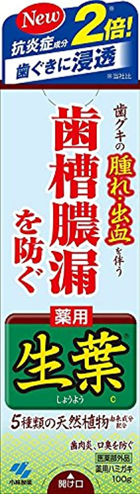 示すカプセルプラスチック生葉(しょうよう) 歯槽膿漏を防ぐ 薬用ハミガキ ハーブミント味 100g × 4個