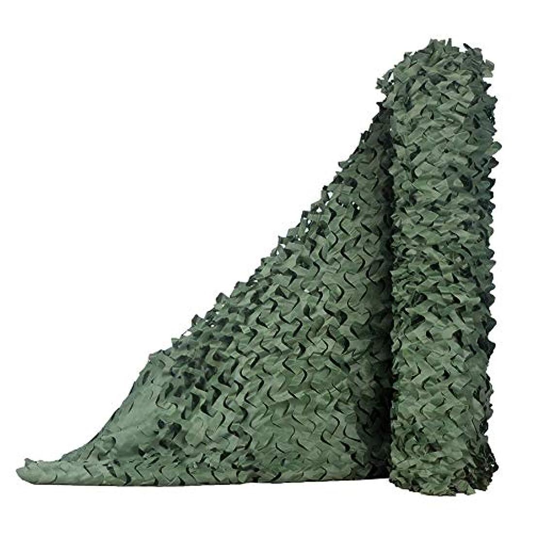 ビスケット宇宙舌迷彩ネット、迷彩ネット - ウッドランド撮影、日焼け止めネット、隠す巣箱、寝室、ジャングルカバーネット、キャンプ、グリーン ZHAOFENGMING (色 : 緑, サイズ さいず : 12x12m)
