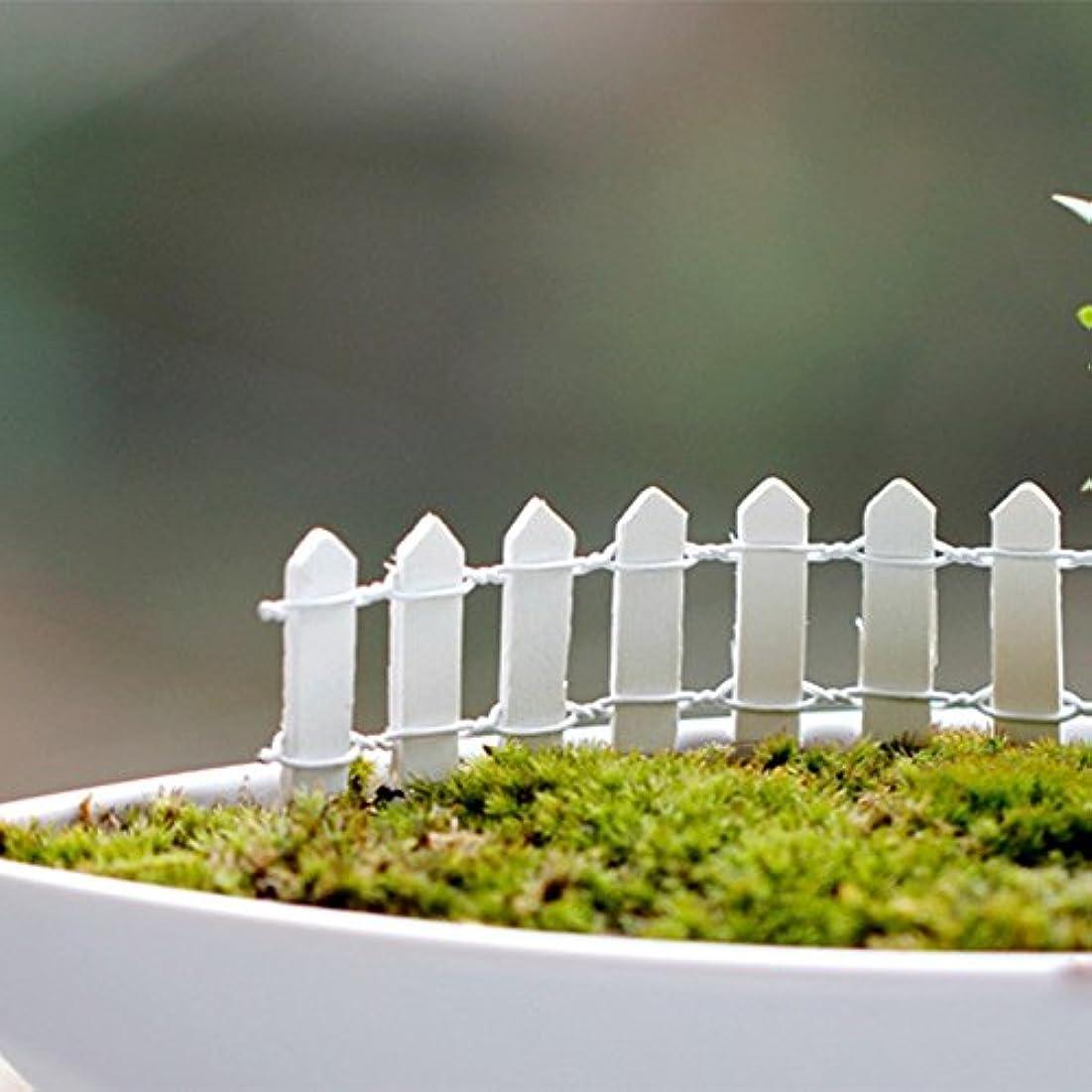 拳夫婦遅いJicorzo - 20個DIY木製の小さなフェンスモステラリウム植木鉢工芸ミニおもちゃフェアリーガーデンミニチュア[ホワイト]