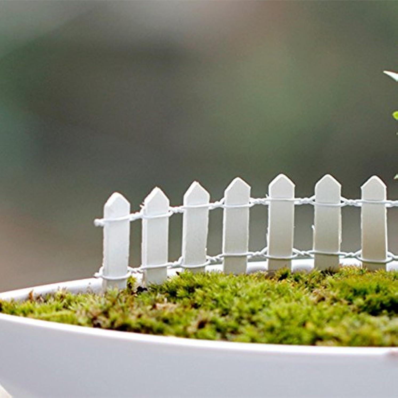 病院軽食パンフレットJicorzo - 20個DIY木製の小さなフェンスモステラリウム植木鉢工芸ミニおもちゃフェアリーガーデンミニチュア[ホワイト]