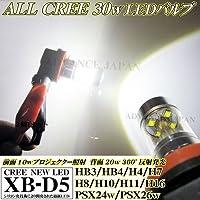 アドヴァンスジャパン LEDフォグランプ CREE 30w ホワイト 2個 6000k ライト バルブ形状:H10