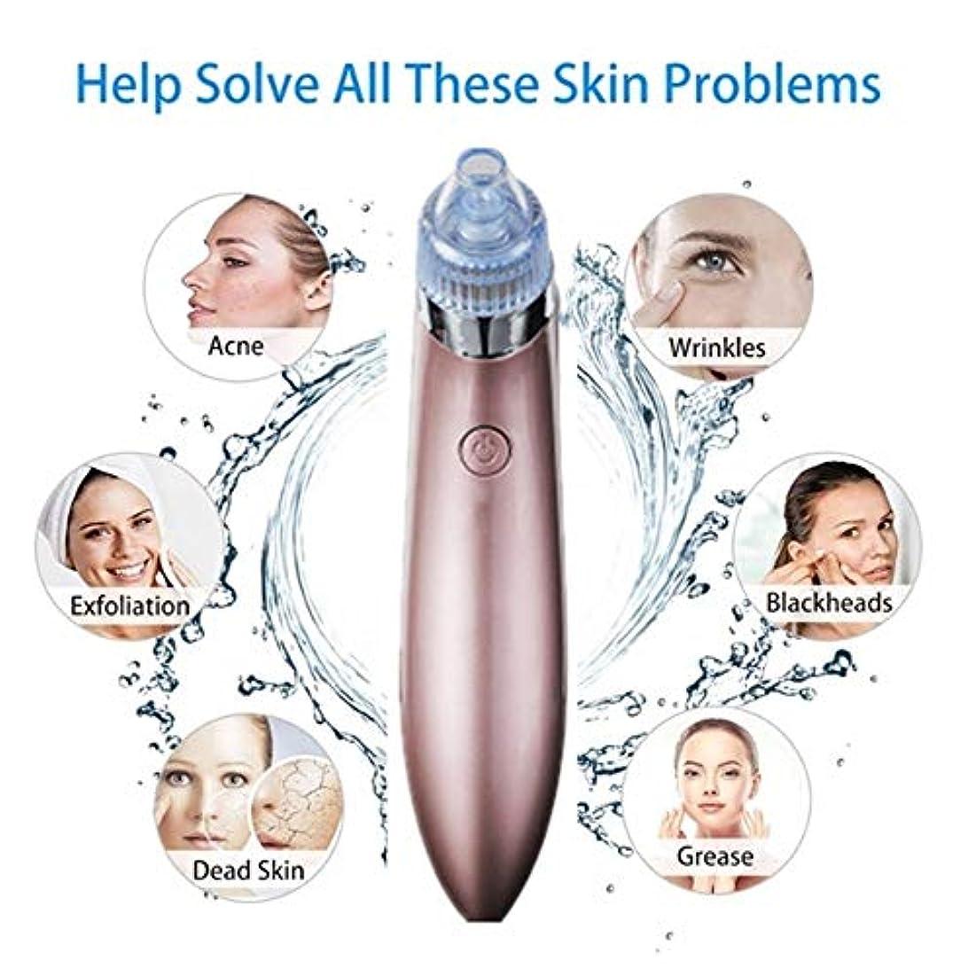 こねる公式想像する2調節可能な強度を持つブラックヘッドリムーバー毛穴バキュームUSB充電式毛穴の黒ずみ除去ツールハンドマッサージと3交換可能なプローブ女性と男性の顔の皮膚のトリートメント
