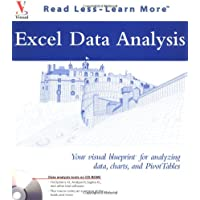 Excel Data Analysis: Your visual blueprint for analyzing data, charts, and PivotTables (Visual Read Less, Learn More)